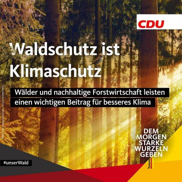 Waldschutz