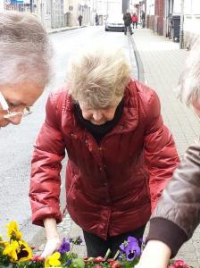Bepflanzungsaktion der CDU-Fraktion4